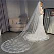 Voile de mariée voile traînant exquise dentelle voile peigne cheveux accessoires de mariage