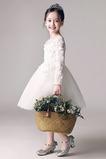 Robe de fille de fleur Dentelle Printemps Petit collier circulaire
