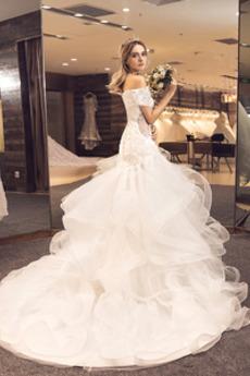 Robe de mariée Tulle Laçage Automne Rosée épaule A-ligne Couvert de Dentelle