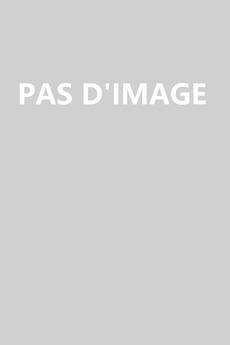 Robe de mariée Laçage Décalcomanie aligne Manche Aérienne Couvert de Dentelle
